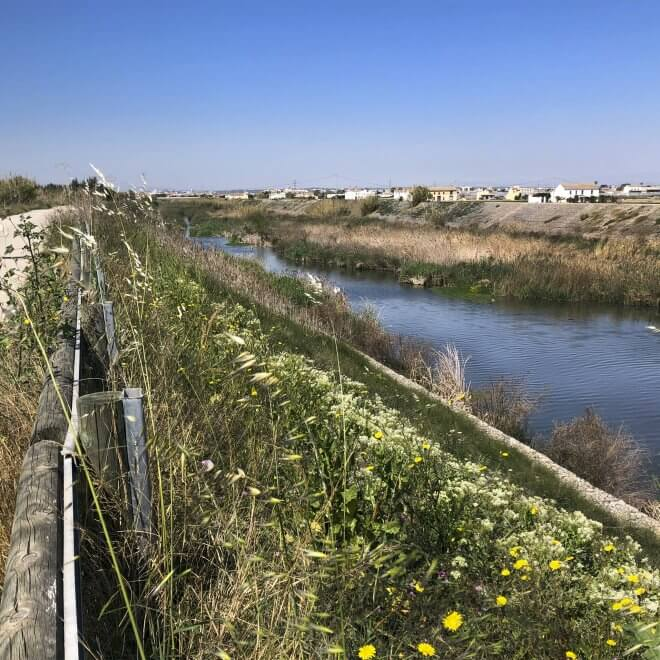 walking-tour-albufera