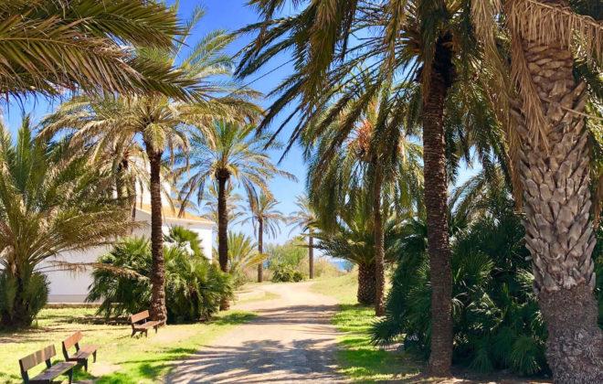 walking-tour-beach-II (1)